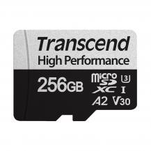 TranscendTranscend microSDXC 256 GB U3 (R100 / W85)
