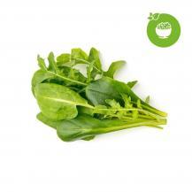 Click and GrowClick and Grow Smart Garden Refill 9-pack Grön sallads mix