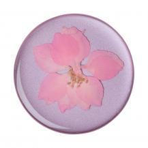 PopSocketsPOPSOCKETS Pressed Flower Delphinium Avtagbart Grip